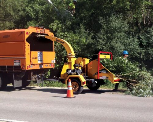 Commercial Tree Services-Lake Wales FL Tree Trimming and Stump Grinding Services-We Offer Tree Trimming Services, Tree Removal, Tree Pruning, Tree Cutting, Residential and Commercial Tree Trimming Services, Storm Damage, Emergency Tree Removal, Land Clearing, Tree Companies, Tree Care Service, Stump Grinding, and we're the Best Tree Trimming Company Near You Guaranteed!