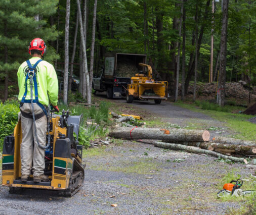 Emergency Tree Removal-Lake Wales FL Tree Trimming and Stump Grinding Services-We Offer Tree Trimming Services, Tree Removal, Tree Pruning, Tree Cutting, Residential and Commercial Tree Trimming Services, Storm Damage, Emergency Tree Removal, Land Clearing, Tree Companies, Tree Care Service, Stump Grinding, and we're the Best Tree Trimming Company Near You Guaranteed!